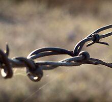 wire by JeffStone