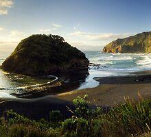 Prehistoric, O'Neills Beach by Michael Treloar