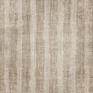 Striped burlap (Hessian series 3 of 3) by John Medbury (LAZY J Studios)
