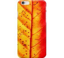 iLeaf iPhone Case/Skin