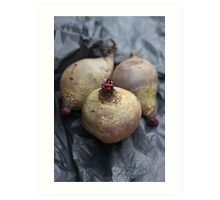 Beetroot Art Print