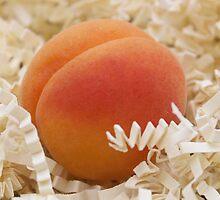 Apricot by Jeanne Horak-Druiff