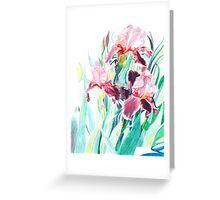 Trio of Purple Irises Greeting Card