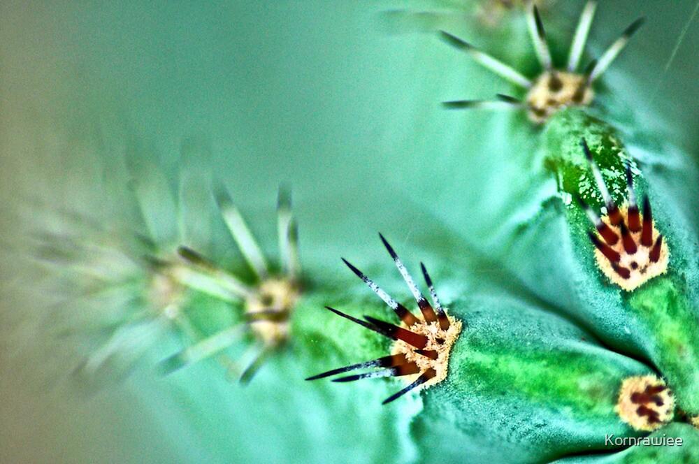 Thorns between the lover... by Kornrawiee
