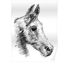 speedy Arab horse Poster