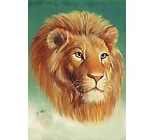 The King of the Jungle Photographic Print