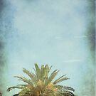 Tree Top by Judi FitzPatrick