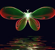 Butterfly Reflections by Pam Amos