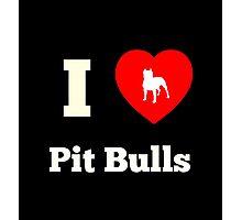 I Heart Pit Bulls Photographic Print