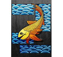 Little Red Fish Photographic Print