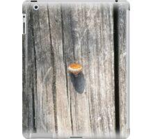 empty acorn iPad Case/Skin