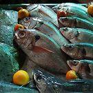 Fish eyes ... by angelfruit