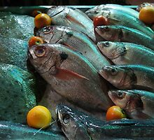 Fish eyes ... by angelfruit