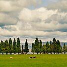 Little Trees Big Skies by Mel Sinclair