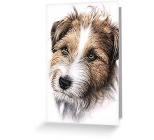 Jack Russell Terrier Portrait Greeting Card