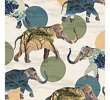 Elephant Polka Photographic Print