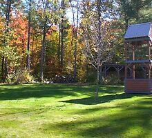 New Hampshire Green Grass by nauruking