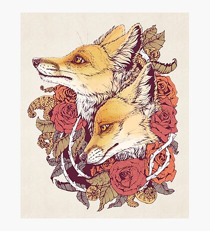 Red Fox Bloom Photographic Print