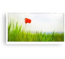 imagination Canvas Print