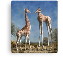 Emmm...Welcome to the herd. Canvas Print