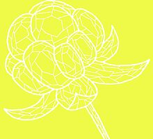 The gold of the north - Cloudberry - white on yellow - OneMandalaAday by onemandalaaday