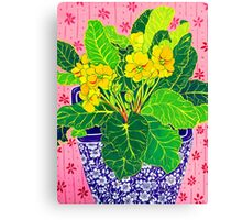 Pretty Primulas Canvas Print