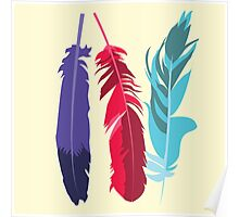 Indie Feathers Poster