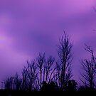 Dark purple sky on a cloudy day in Atlanta, Ga by Scott Mitchell