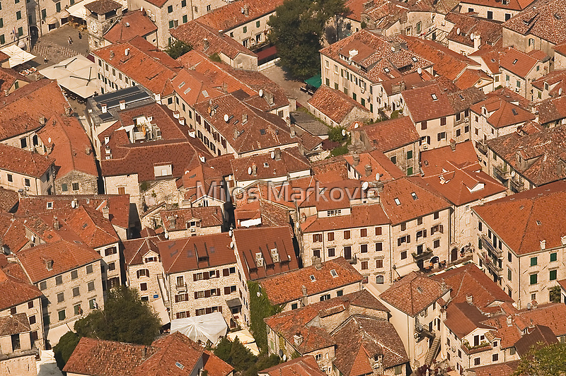 Rooftops by Milos Markovic