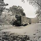 Boxcar Snow by Sherryll  Johnson