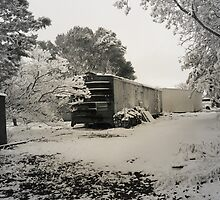 Boxcar Snow by Sherryll  Johnson