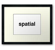 spatial Framed Print