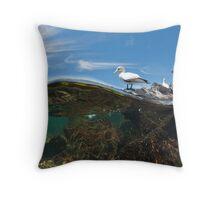 Gannets - Popes Eye Throw Pillow