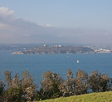 A view across to St. Mawes from St Antony by Keith Larby