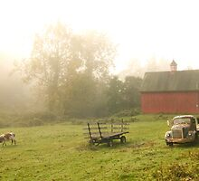 Country Morning by DChungaPhoto