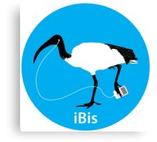 iBis 2: the reIBISening! Canvas Print