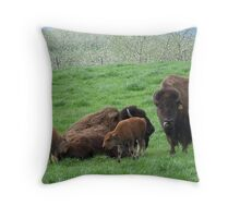 Buffalo Family Throw Pillow