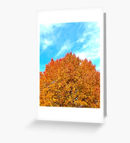 Orange & Blue Make Fall Greeting Card