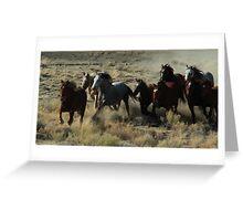 Wild Horse Round Up Greeting Card