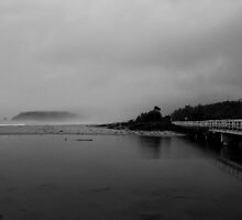 Cuttagee Beach by Nick Browne