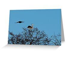 Heron 12 Greeting Card