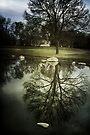 Reflected Splendor by KBritt