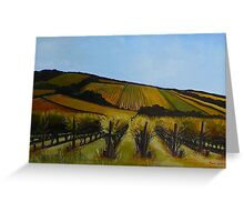 Tuck's Ridge vineyard, Mornington Peninsula. Elizabeth Moore Golding 2009Ⓒ Greeting Card