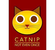 Catnip - not even once Photographic Print