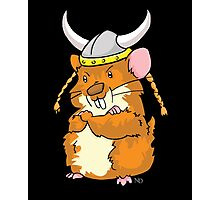 The Mighty Viking Hamster Photographic Print