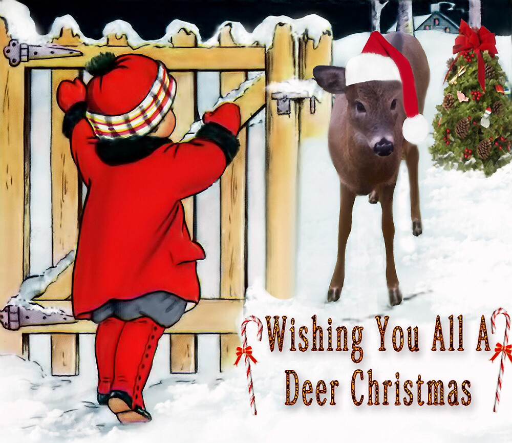 ✿◕‿◕✿  ❀◕‿◕❀ Come A Little Bit Closer My Deer ✿◕‿◕✿  ❀◕‿◕❀ by ✿✿ Bonita ✿✿ ђєℓℓσ