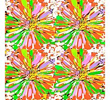 Dahlia Color burst  Flower Abstract Photographic Print