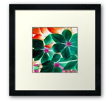 MSFW15- DAYS OF SUMMER- GREEN FLORALS/FLOWERS Framed Print