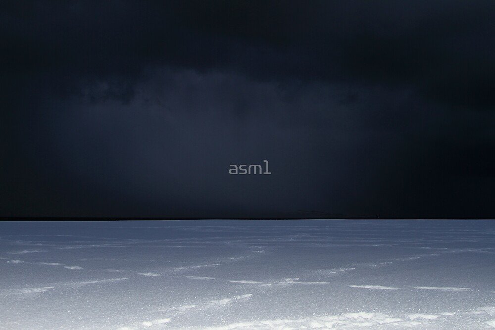 Winter Landscape (with storm-darkened sky) by asm1