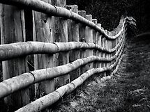 I've taken a fence by Yampimon